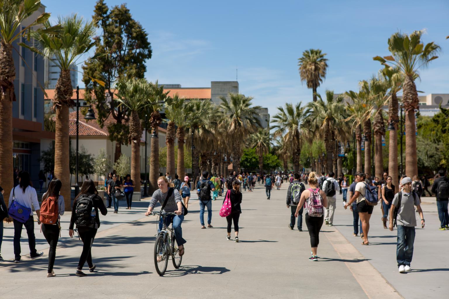 Recuni Header Image San_Jose_State_Univesity_Campus___3