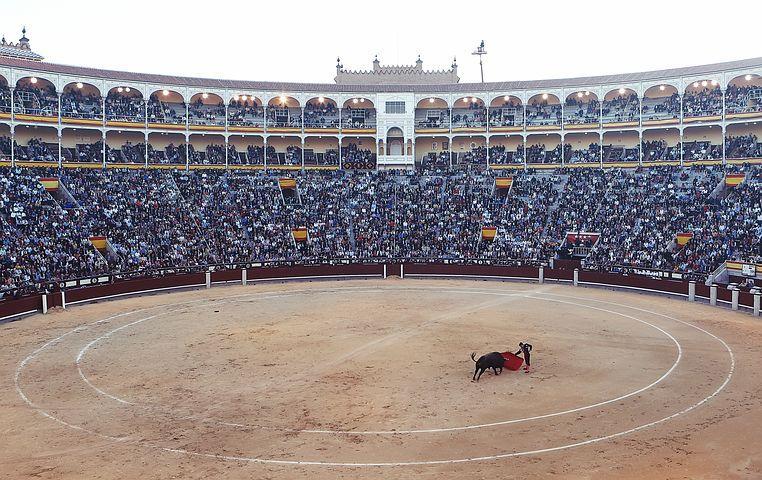 Recuni Header Image bullfight-406865__480